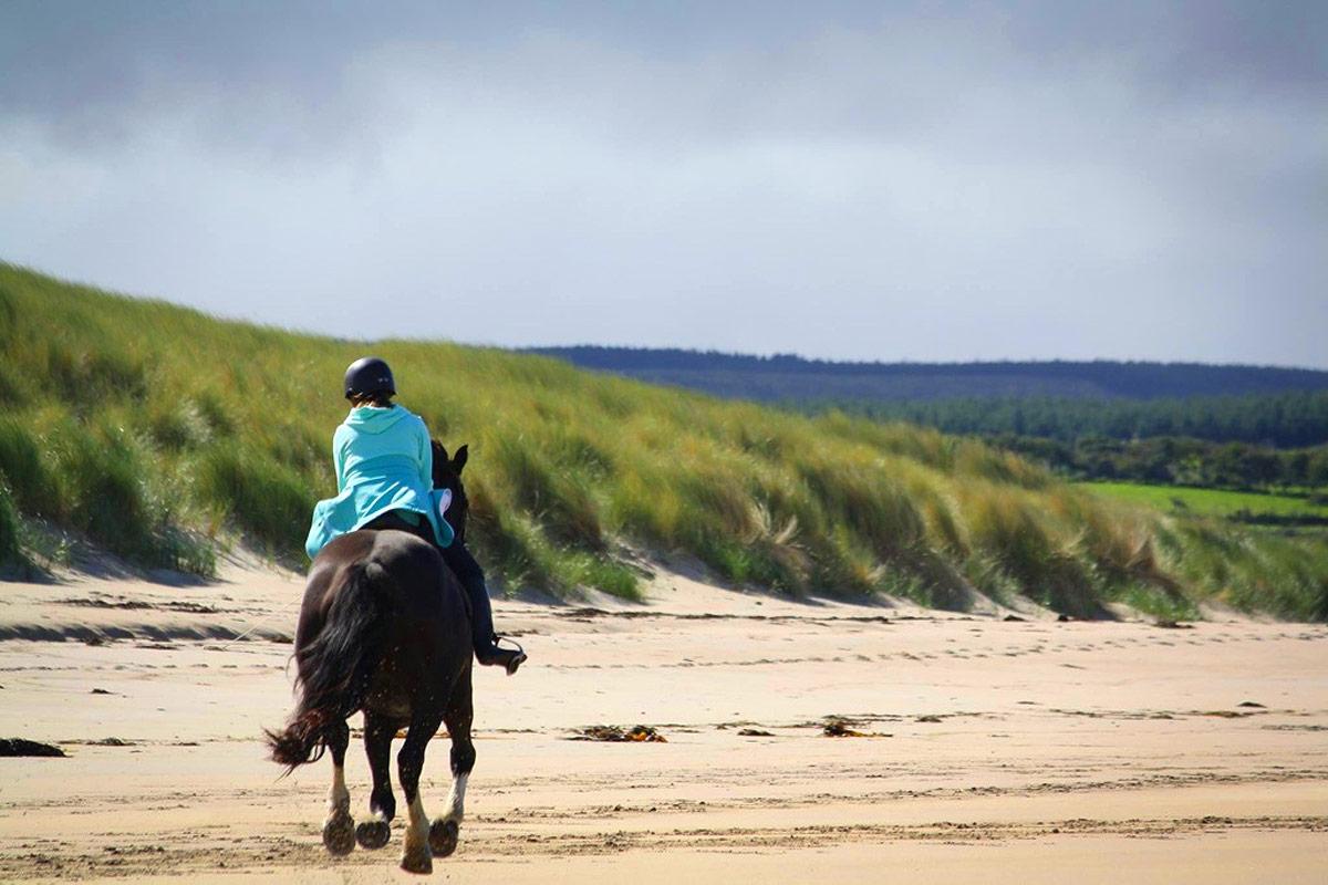 Horse Riding Sligo